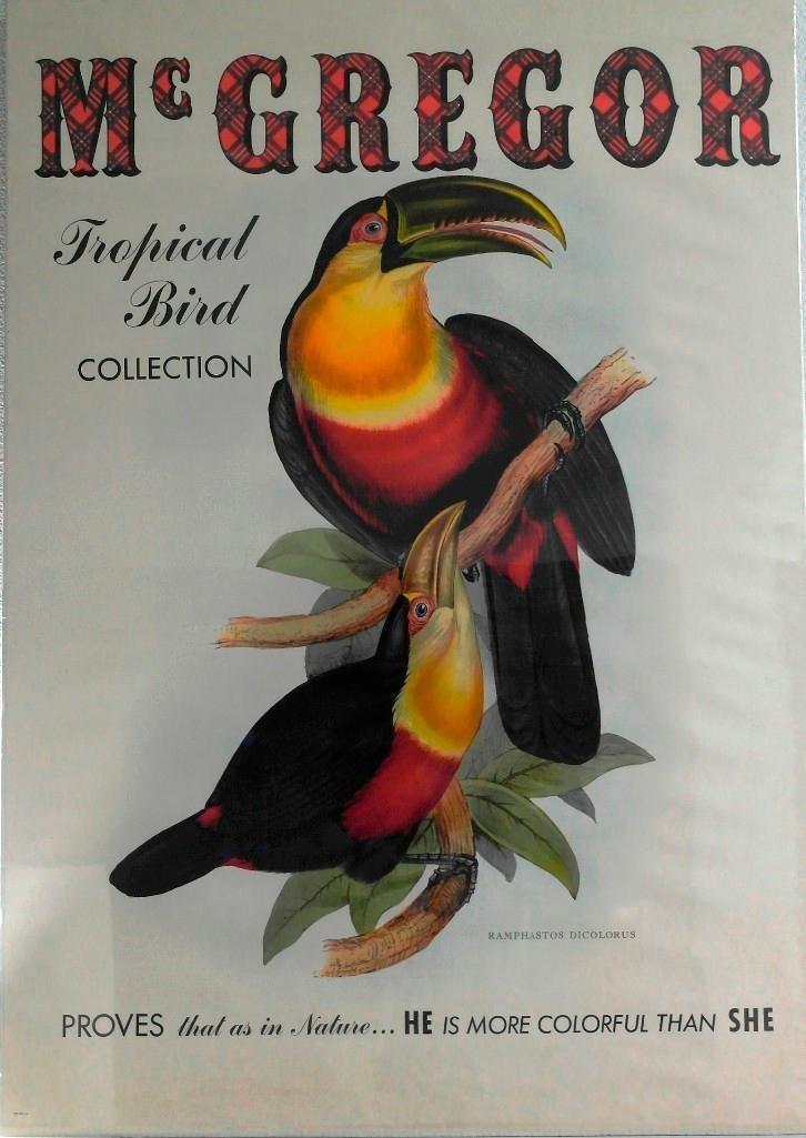 McGregor Sportswear Toucan Poster - Tropical Bird