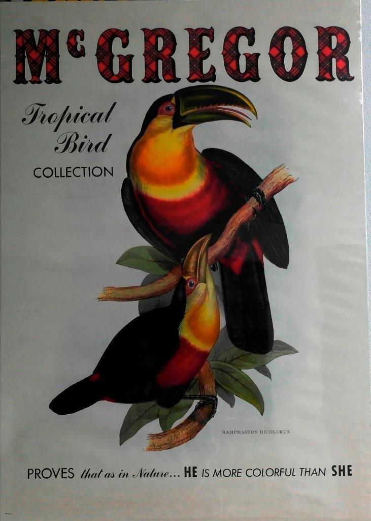 McGregor Sportswear Toucan Poster - Tropical Bird - 3