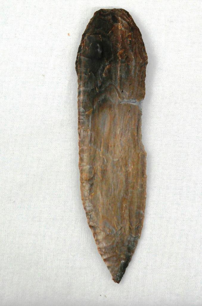 Petrified Wood Knife