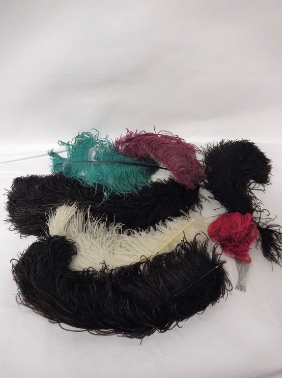 Lot of Vintage Ostrich Feathers, 7 pieces - 2