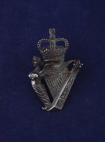 568: Royal Irish Regiment cap badge