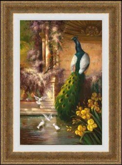 """3A: """"Peaceful Guests"""" by Robert Lui"""