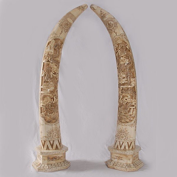 7A: PAIR - HAND CARVED BONE TUSKS
