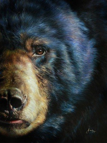 """""""GRIZZLY BEAR""""  EMBELLISHED GICLEE GALLERY WRAP"""