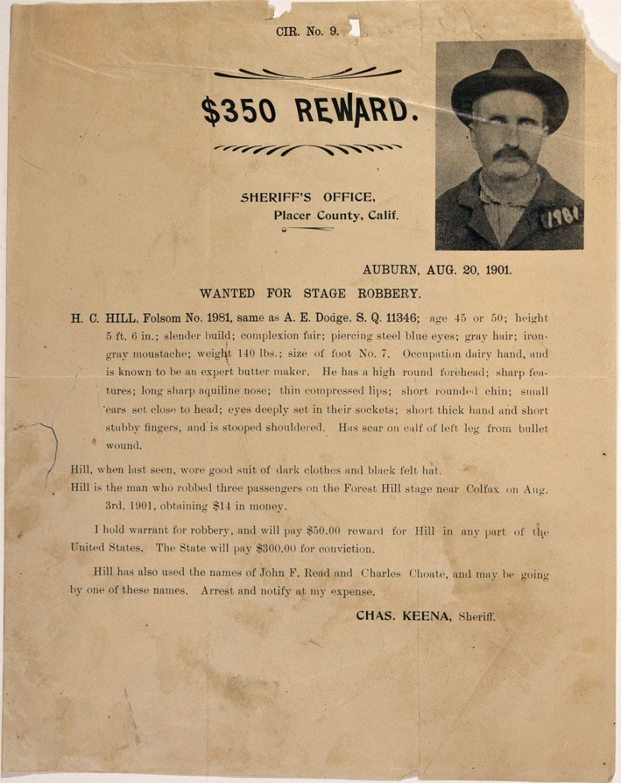239: CA - Auburn,Placer County - August 20, 1901 - Stag