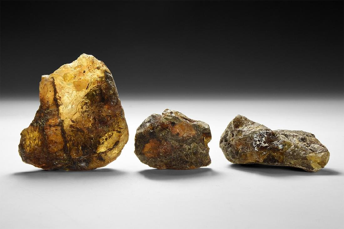 Large Natural Amber Specimens.