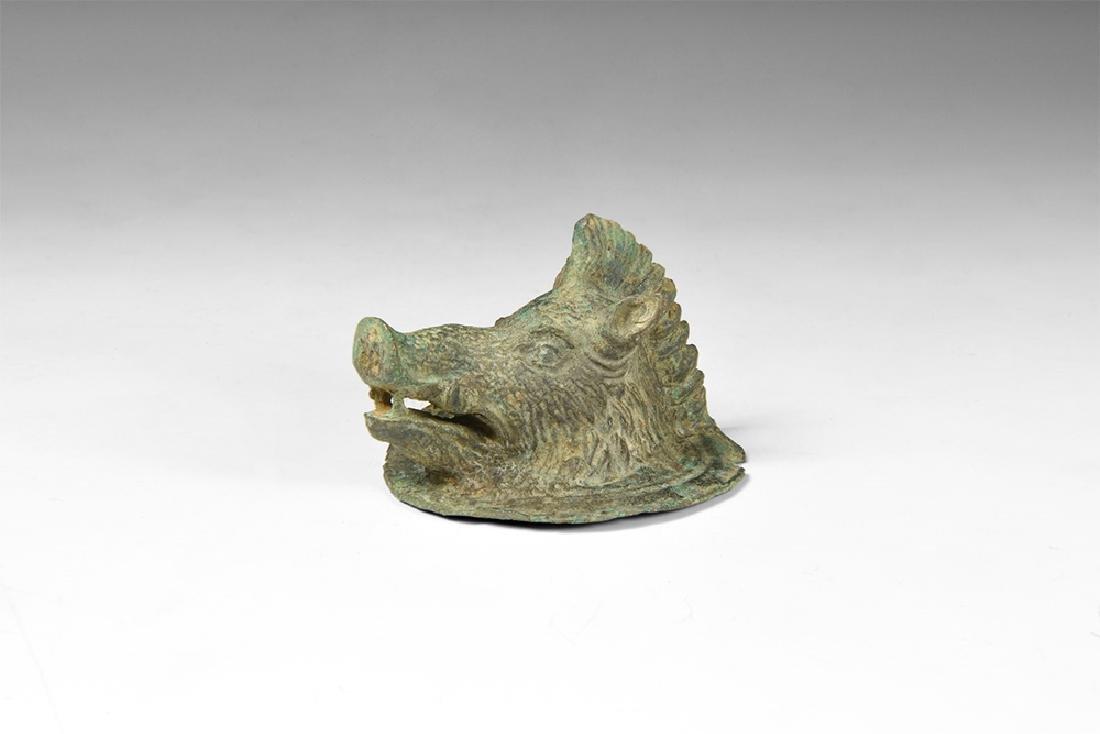 Roman Boar's Head Mount
