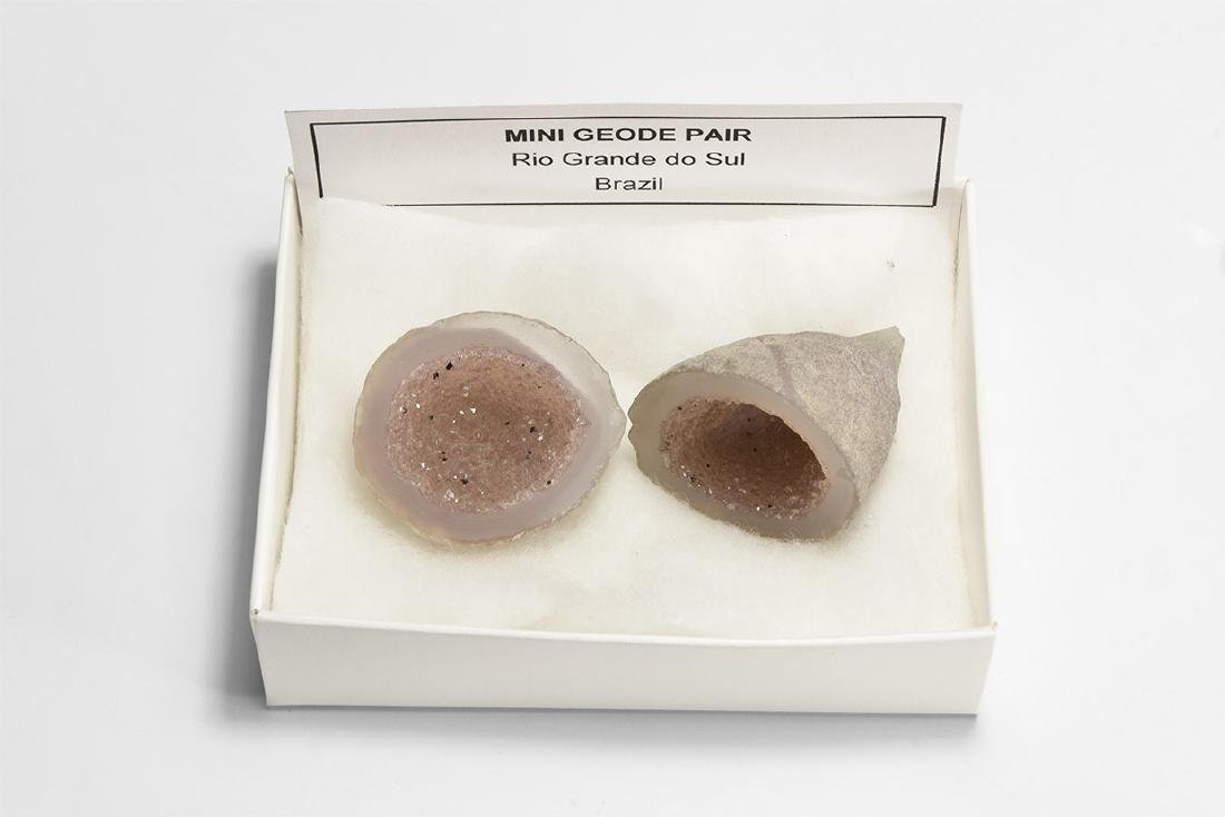 Natural History - Mini Geode Pair
