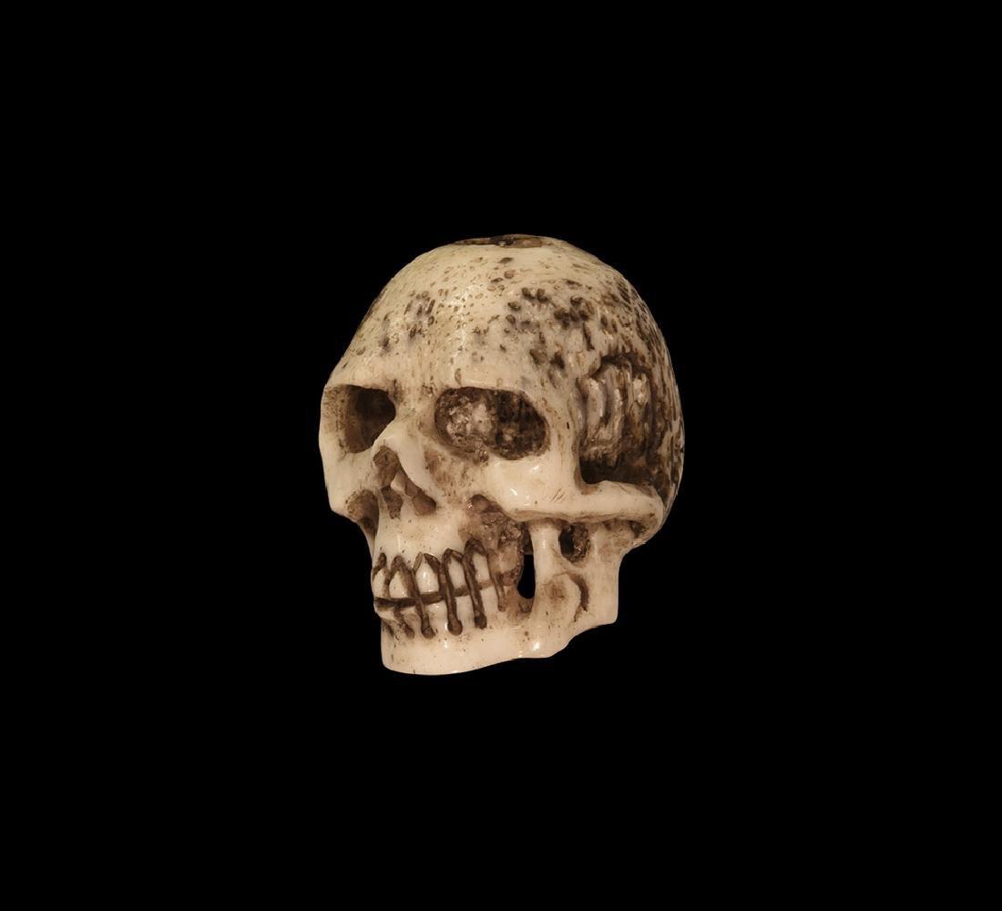 Post Medieval Jacobean Bone Skull Model