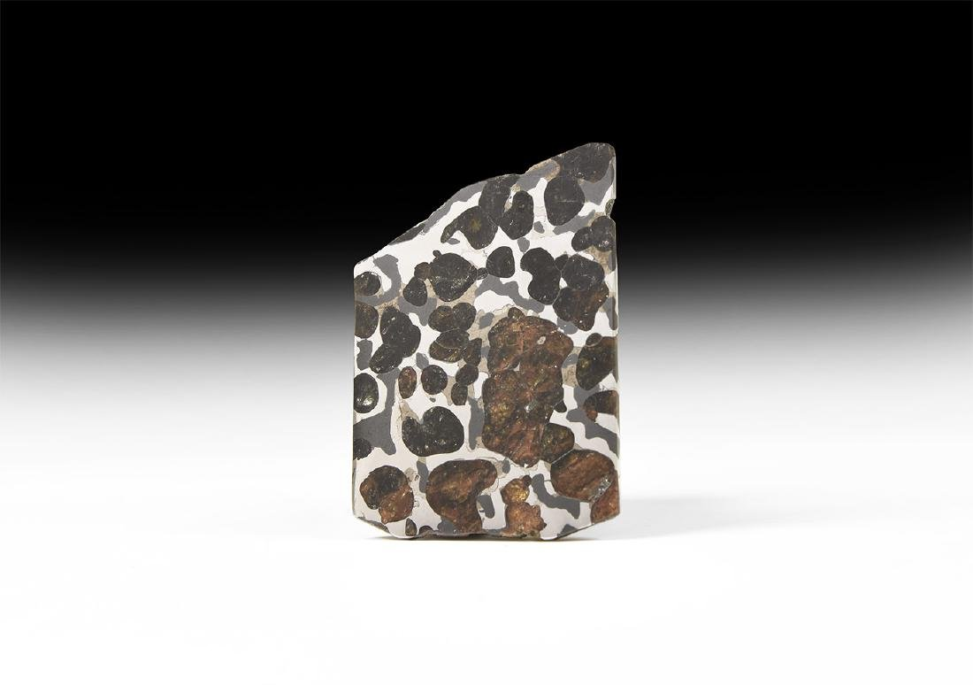 Habaswein Cut and Polished Meteorite Slice.