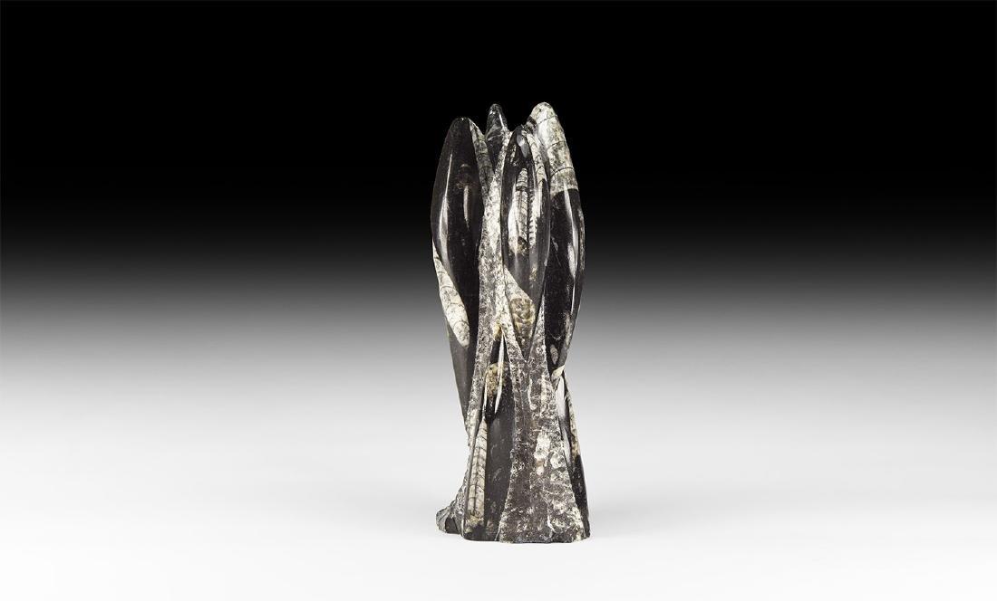 Polished Orthoceras Fossil Block