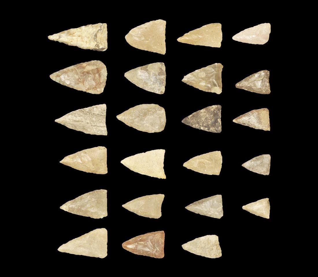 North American Florida Arrowhead Group