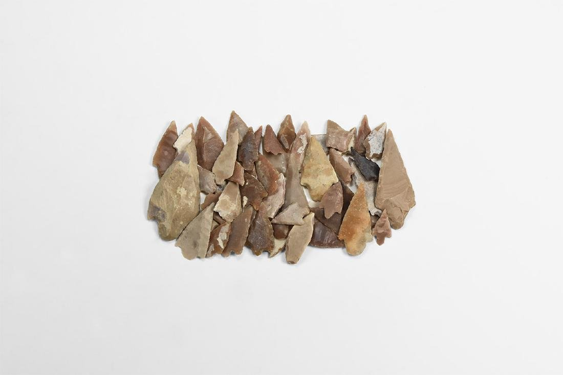 Barbed and Tanged Arrowhead Collection