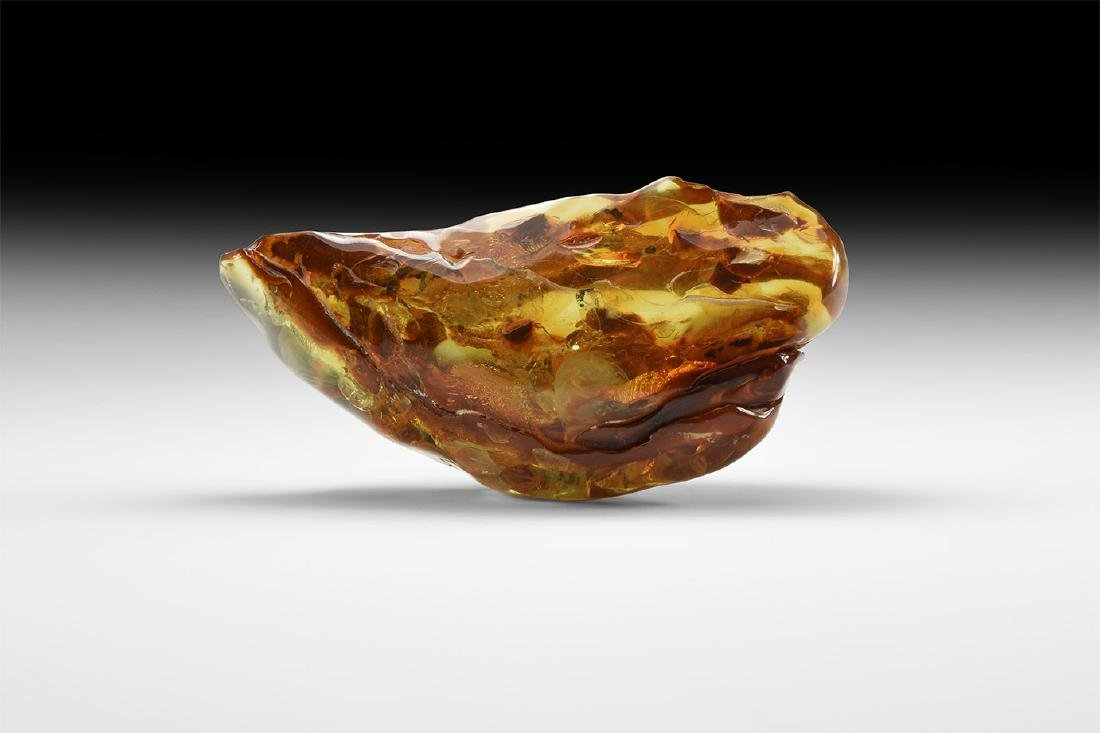 Large Polished Freeform Amber with Insects