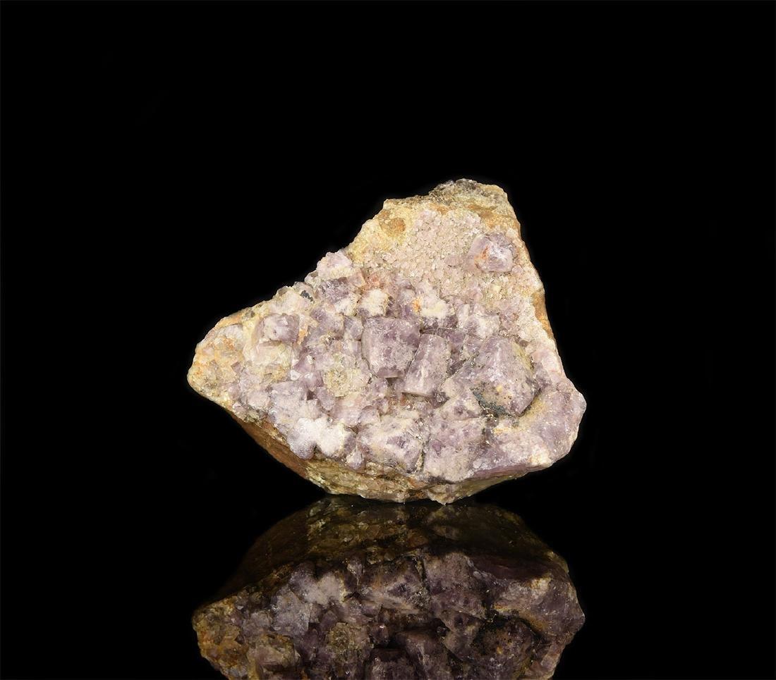 Natural History - British Fluorite Mineral Specimen