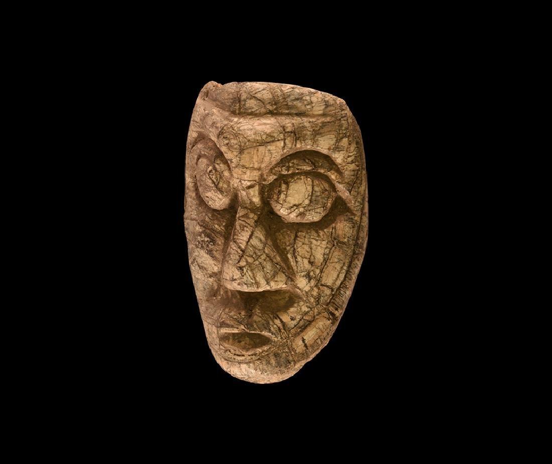 Natural History - Javanese Mastodon Tusk Carving