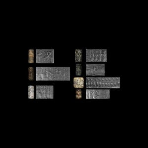 Cylinder Seal Collection
