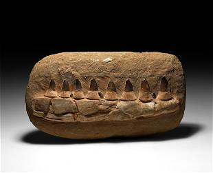 Large Reconstructed Fossil Mosasaur Jaw