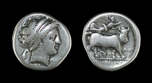 5: Greek Neapolis in Campania - Didrachm