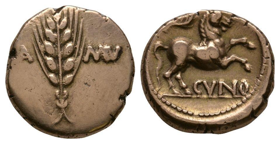 Celtic Iron Age Coins - Trinovantes and Catuvellauni -