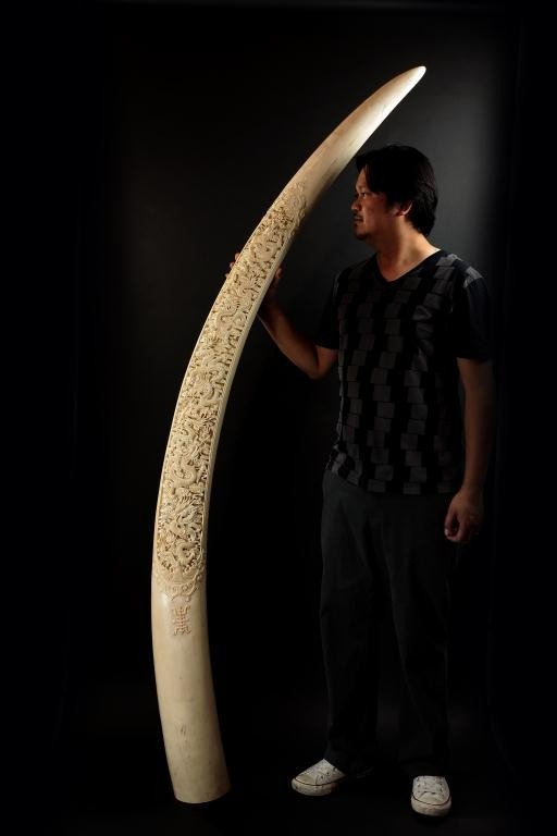 88: MAGNIFICENT CHINESE CARVED IVORY TUSK