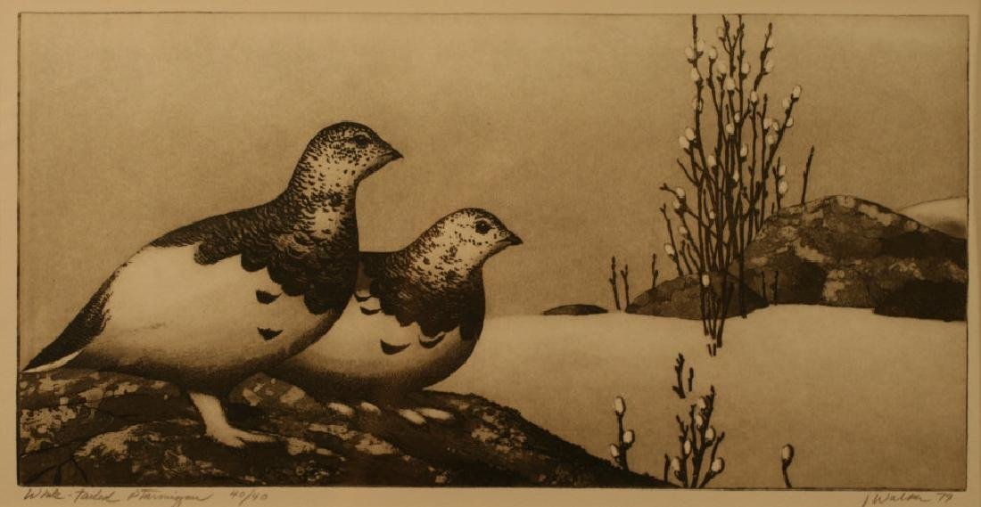 J. Walker, Etching and Original Plate,