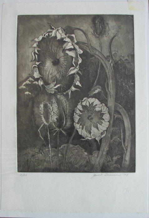 Janet Sorensen, Etching