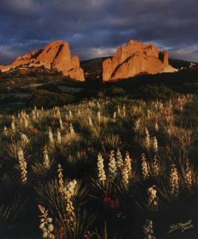 Rich Buzzelli (Colorado), Photograph