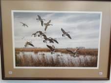 282: Artist signed wildlife print featuring ducks in fl