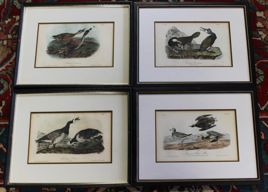 4: 3 JJ Audubon highly colored lithos drawn from nature