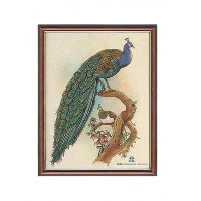 Gemstone Painting Peacock  - Approx. Wgt. 2.5 kgs.