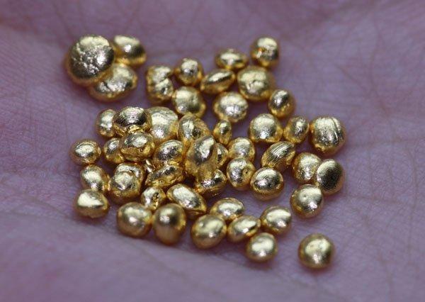 50 GRAMS PURE 24K GOLD SHOTS