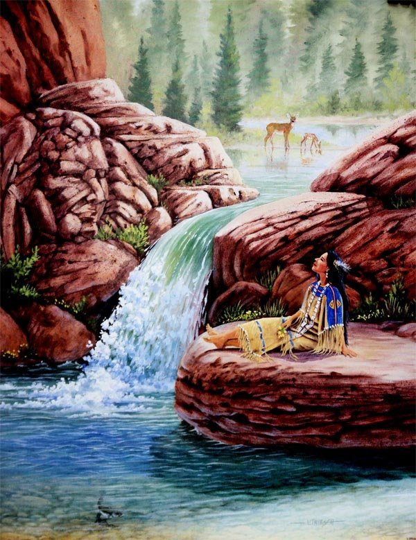 NATIVE AMERICAN BEAUTIFUL LANDSCAPES
