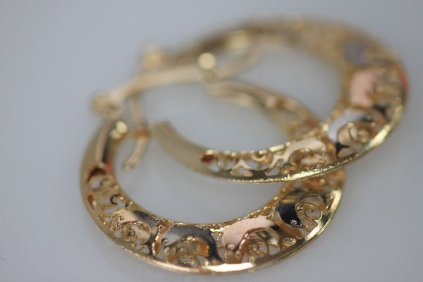 14K GOLD PLATED TRI-COLOR DOLPHIN HOOP EARRINGS - 3