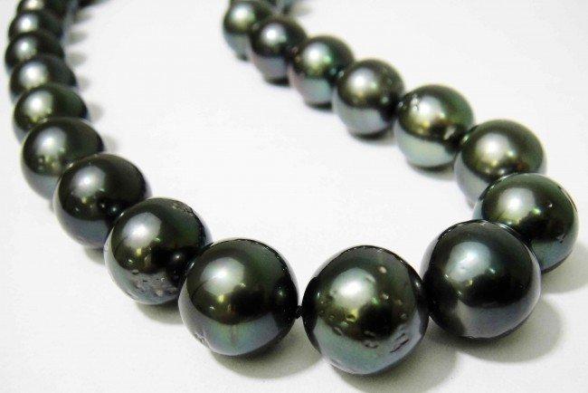 6C: Black Lipped Tahitian Cultured Pearl Ladies Necklac