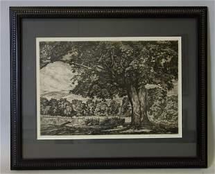 Luigi Lucioni (1900-1988) Etching, Shade Tree