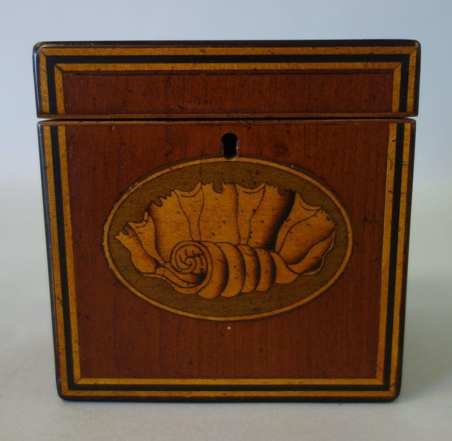 George III English Tea Caddy, Shell Inlay Motif