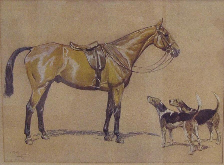 CECIL ALDIN (1870-1935) Horse & Hounds