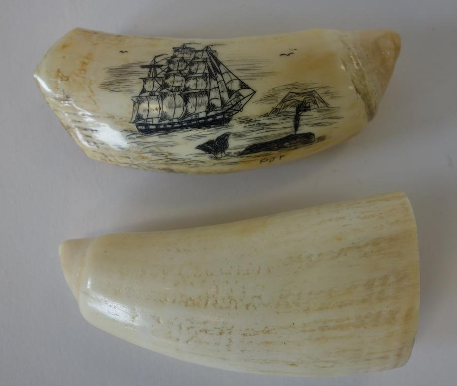 Alaskan Inuit Ivory Scrimshaw Whale's Tooth +