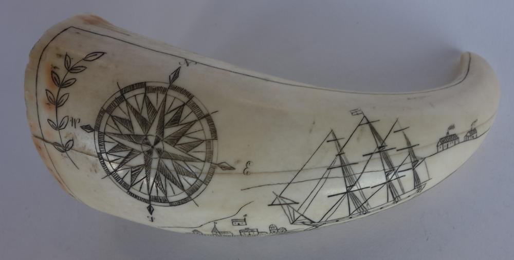 Scrimshaw Whale Tooth, c.1850-1880s