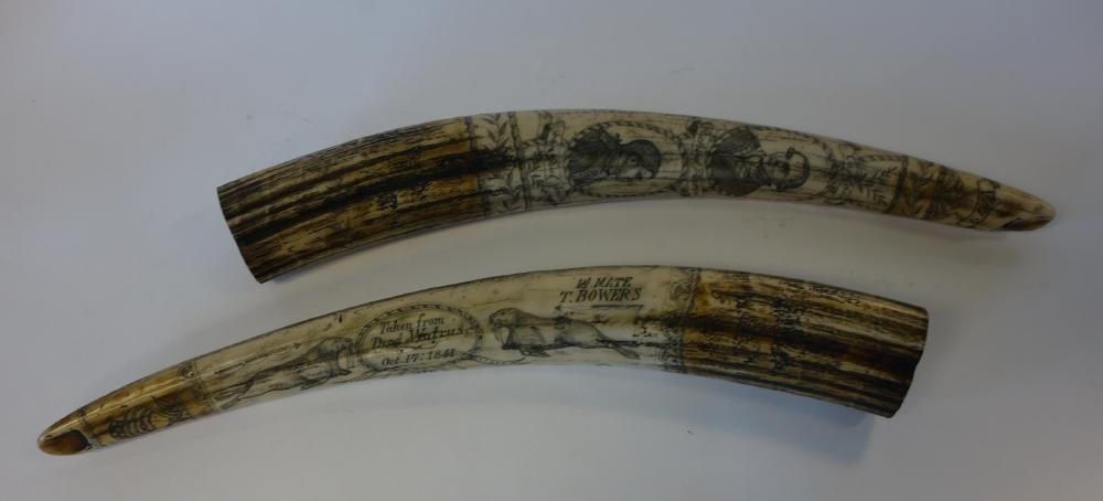 2 Reproduction Scrimshaw Nautical Tusks