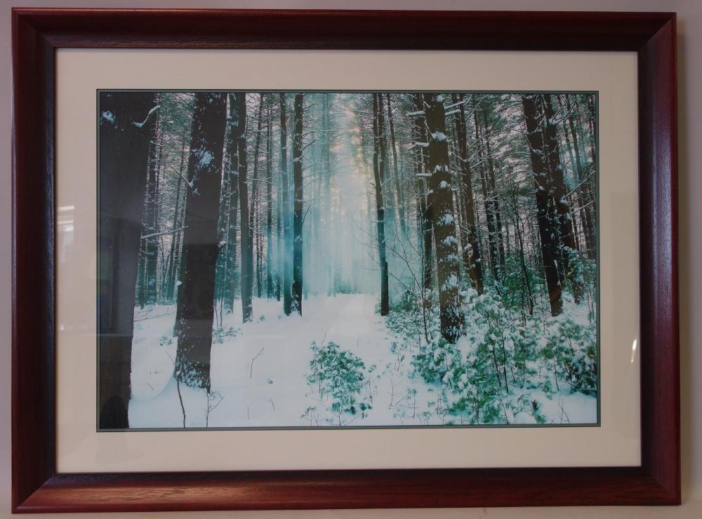 Michael Tischler, Winter Landscape Photograph - 2
