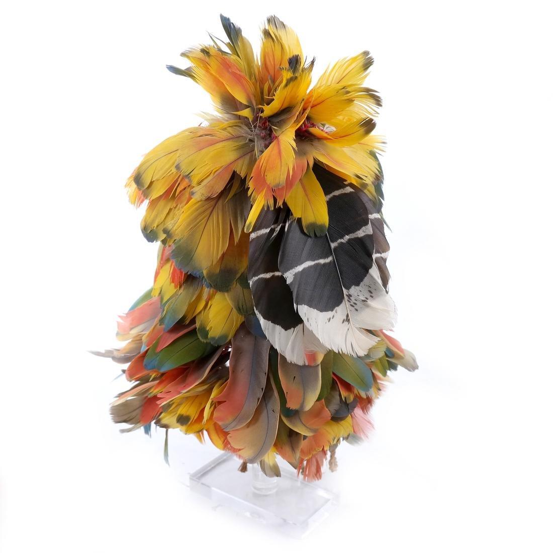 South American Headdress