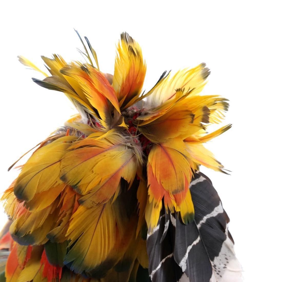 South American Headdress - 2