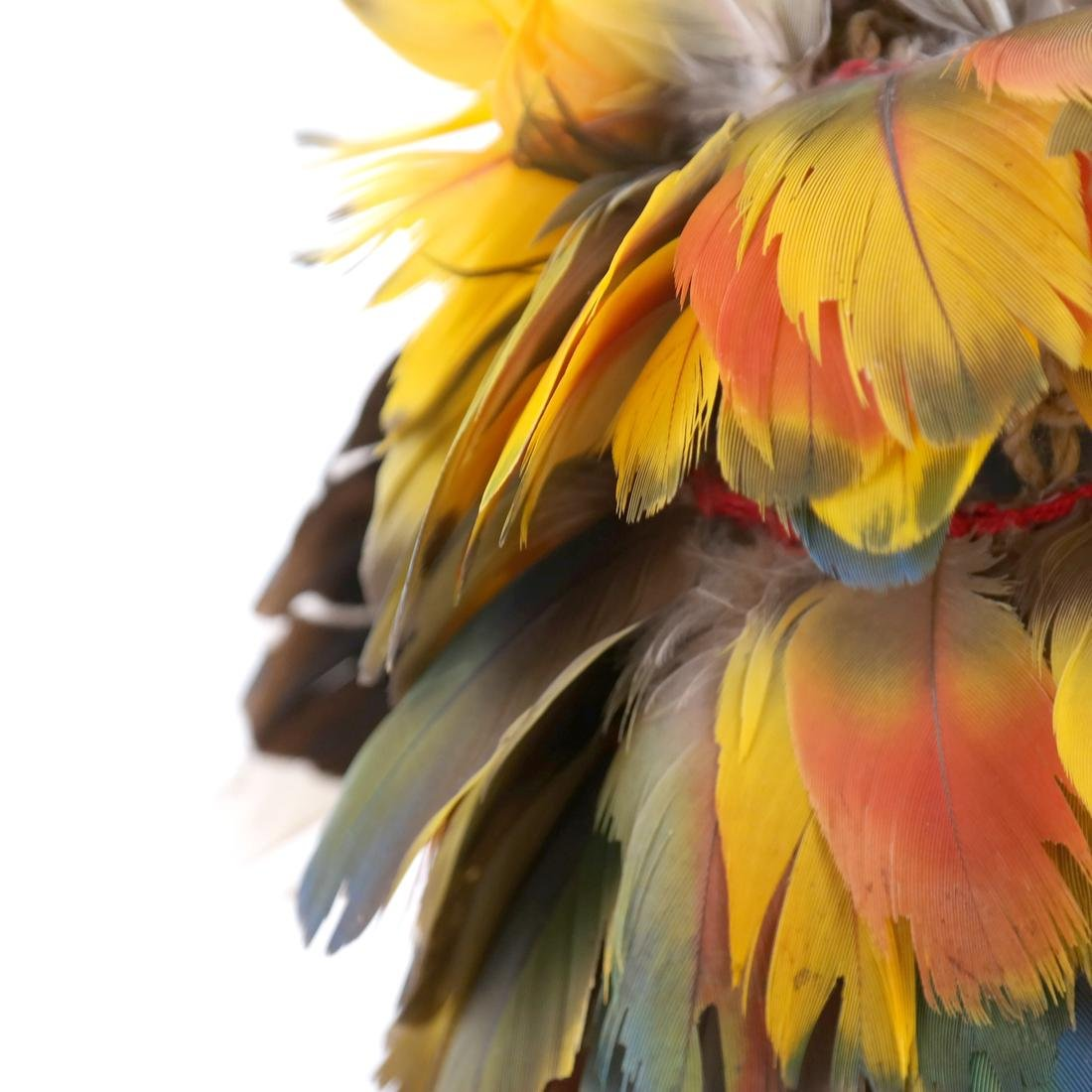 South American Headdress - 5