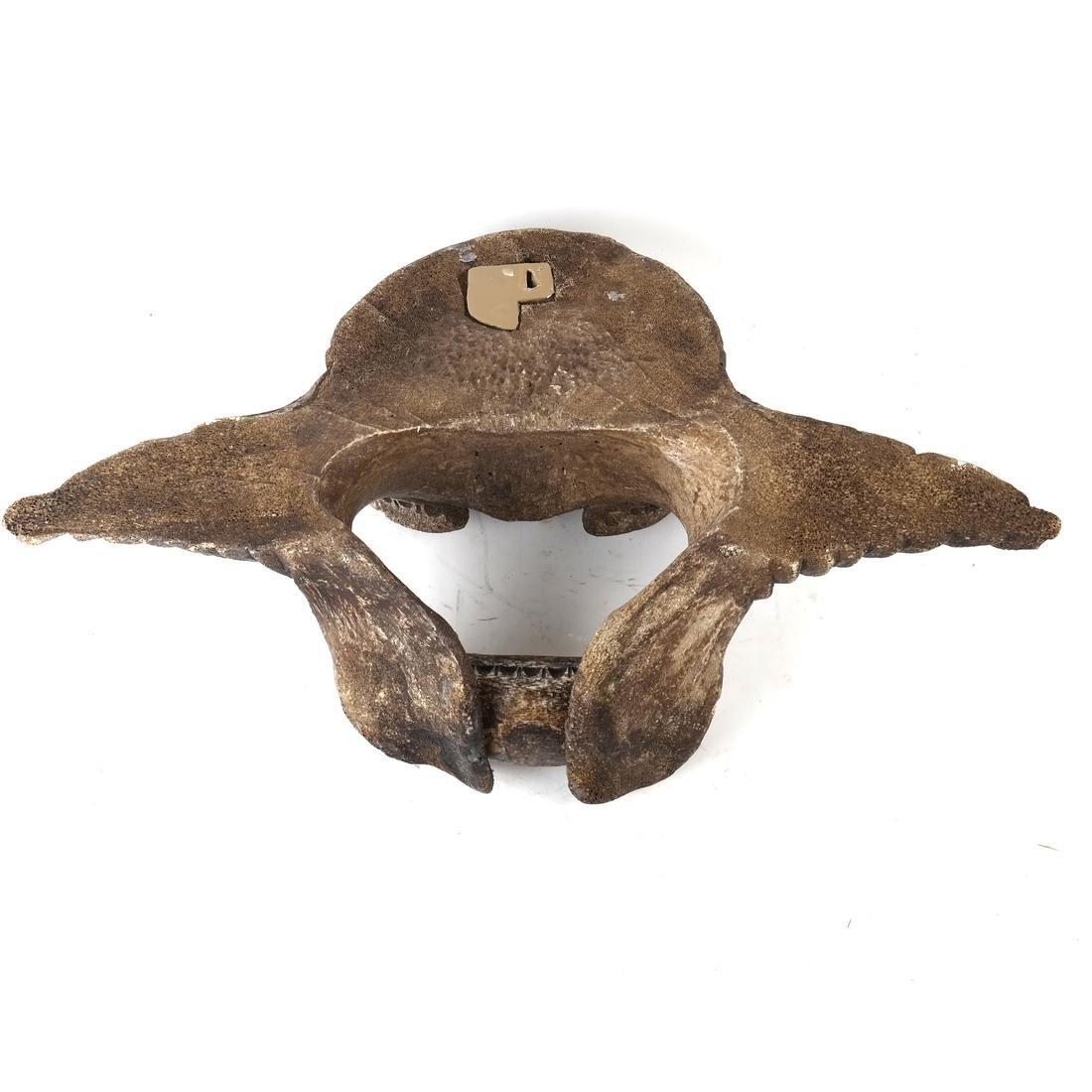 Inuit Whale bone Sculpture - 6
