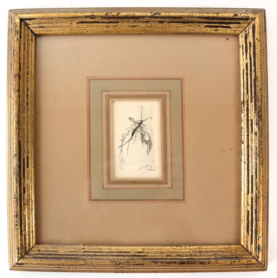 Sheldon Fink - Three Etchings of Insects - 3