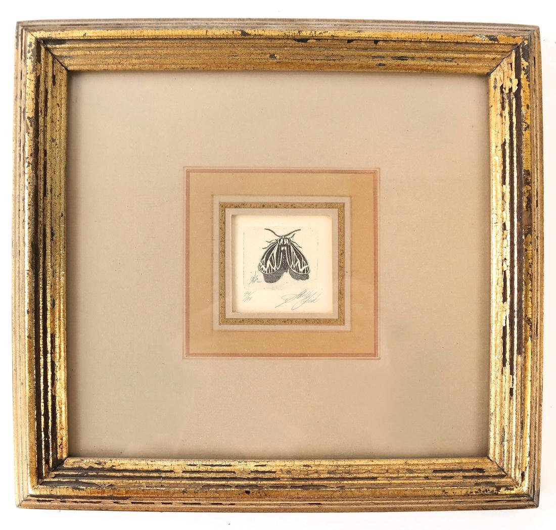 Sheldon Fink - Three Etchings of Insects - 6