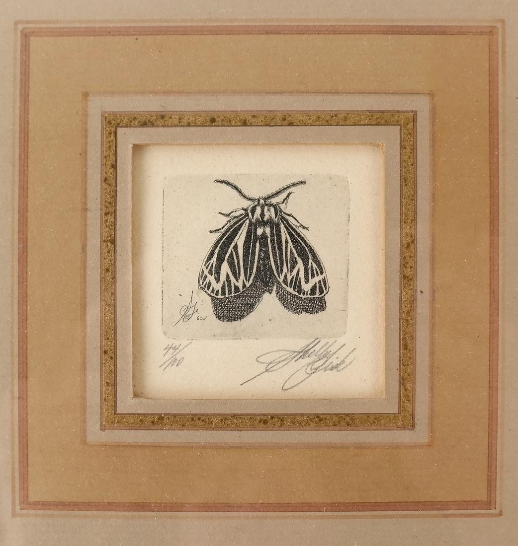 Sheldon Fink - Three Etchings of Insects - 7