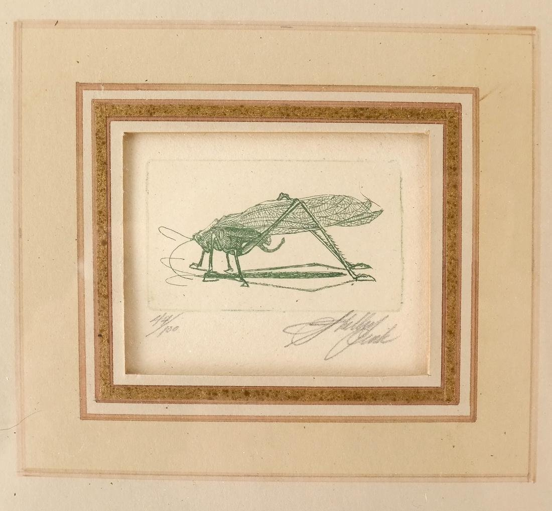 Sheldon Fink - Three Etchings of Insects - 9